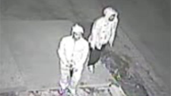 Suspects sought for shooting into home