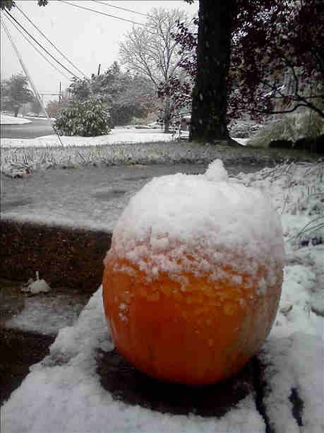 Action News viewer Hilary sent in this photo from the first snowfall of the season in Lansdale, Pa.