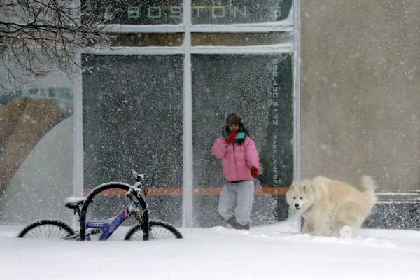 A woman takes pictures of her dog in the snow in the Seaport World Trade Center area of Boston, early Saturday, Feb. 9, 2013. &#40;AP Photo&#47;Gene J. Puskar&#41;   <span class=meta>(AP Photo&#47;Gene J. Puskar)</span>