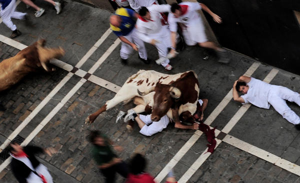 A tamed bull falls on top of a reveler, right, as a Cebada Gago ranch fighting bulls, left, runs towards them during the San Fermin fiestas on Thursday, July 8, 2010, in Pamplona, Spain. &#40;AP Photo&#47;Alvaro Barrientos&#41; <span class=meta>(AP Photo&#47;Alvaro Barrientos)</span>