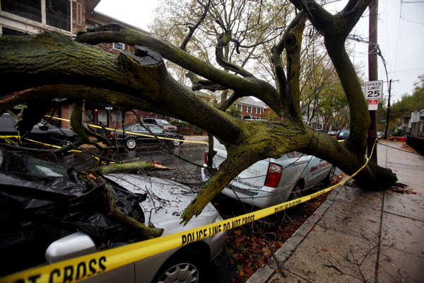A fallen tree lies on top of a car in south Philadelphia Tuesday Oct. 30, 2012. Millions of people from Maine to the Carolinas awoke Tuesday without power, and an eerily quiet New York City was all but closed off by car, train and air as superstorm Sandy steamed inland, still delivering punishing wind and rain.  <span class=meta>(AP Photo&#47;Jacqueline Larma)</span>