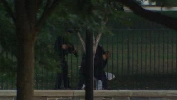 Secret Service apprehends White House fence jumper