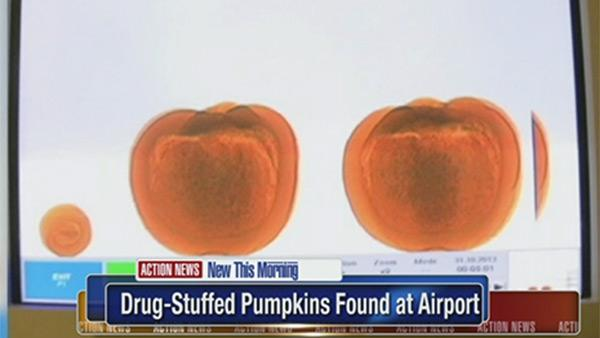 Drug-stuffed pumpkins found at airport