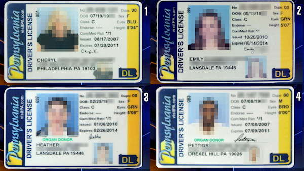 Pick the Fake Pa. ID
