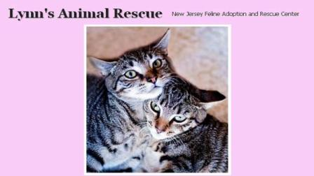 Lynnes Animal Rescue