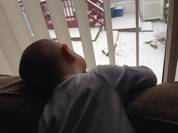 From Christine S (?@Strawberry1363) on Twitter: Little guy watching the snow come down!