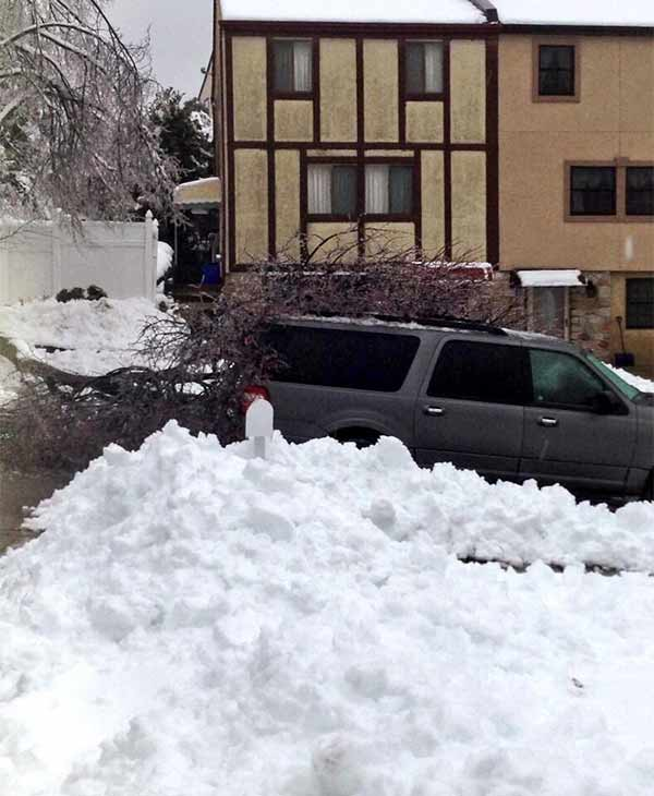 Stuck in Roxborough (From Elizabeth Grady)