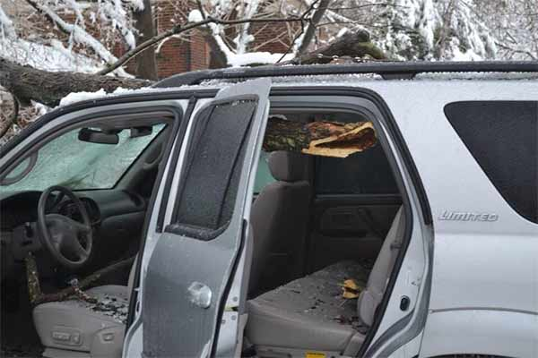A tree came down through an SUV in Merion Station, Pa.