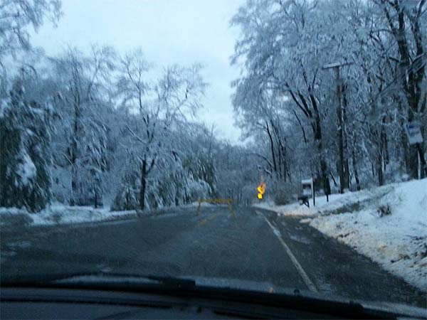 Valley Forge Road near Jenkins Arboretum (From Kelly Cullen)