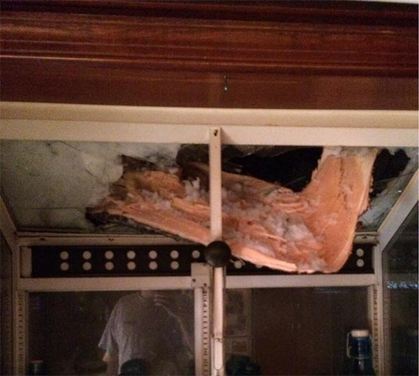 A tree came down and into a house in Spring House, Pa.  (From Liz L.)