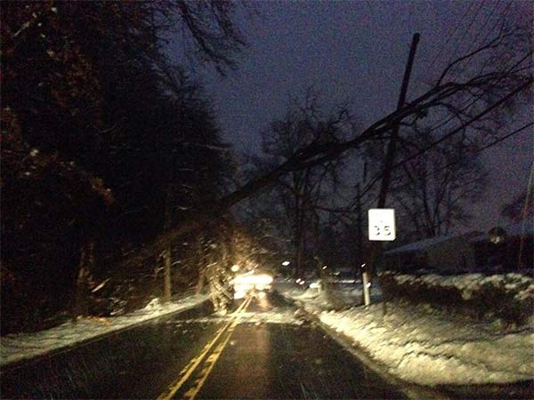 A tree down in Falls Twp., Pa.  (From Liz L.)