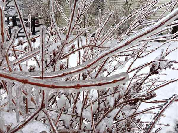 Action News viewer Wendy Chapman captured this photo of the beautiful side of the ice.