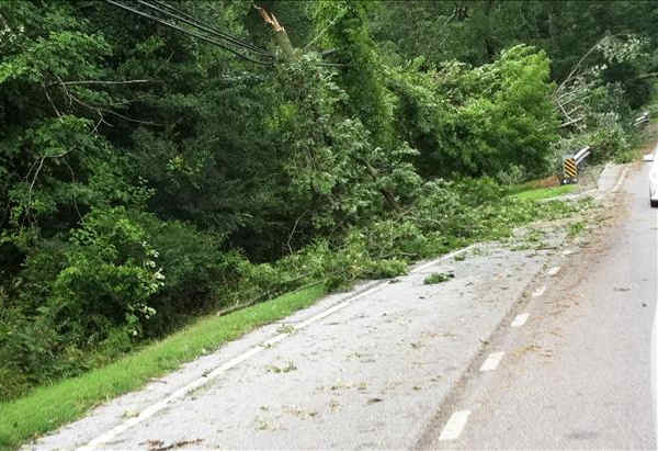 Submitted through sendit.6abc.com.  Caption: Possible straight line wind damage south of Hockessin, DE