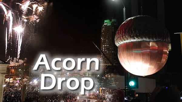 Giant acorn drop nears 20 years