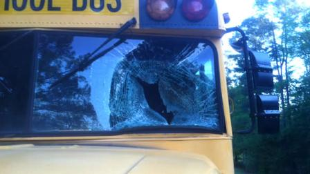 A duck smashed through the windshield of a Cumberland County school bus Tuesday morning as it was on its way to deliver students to Elizabeth Cashwell Elementary School.