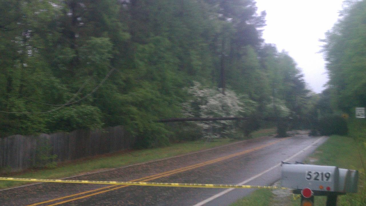 A tree down near Lake Wheeler Road and Enchanted Oaks Drive in Raleigh.
