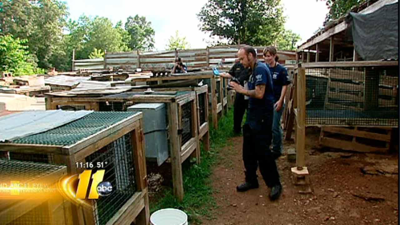 Puppy mills could face new restrictions in North Carolina