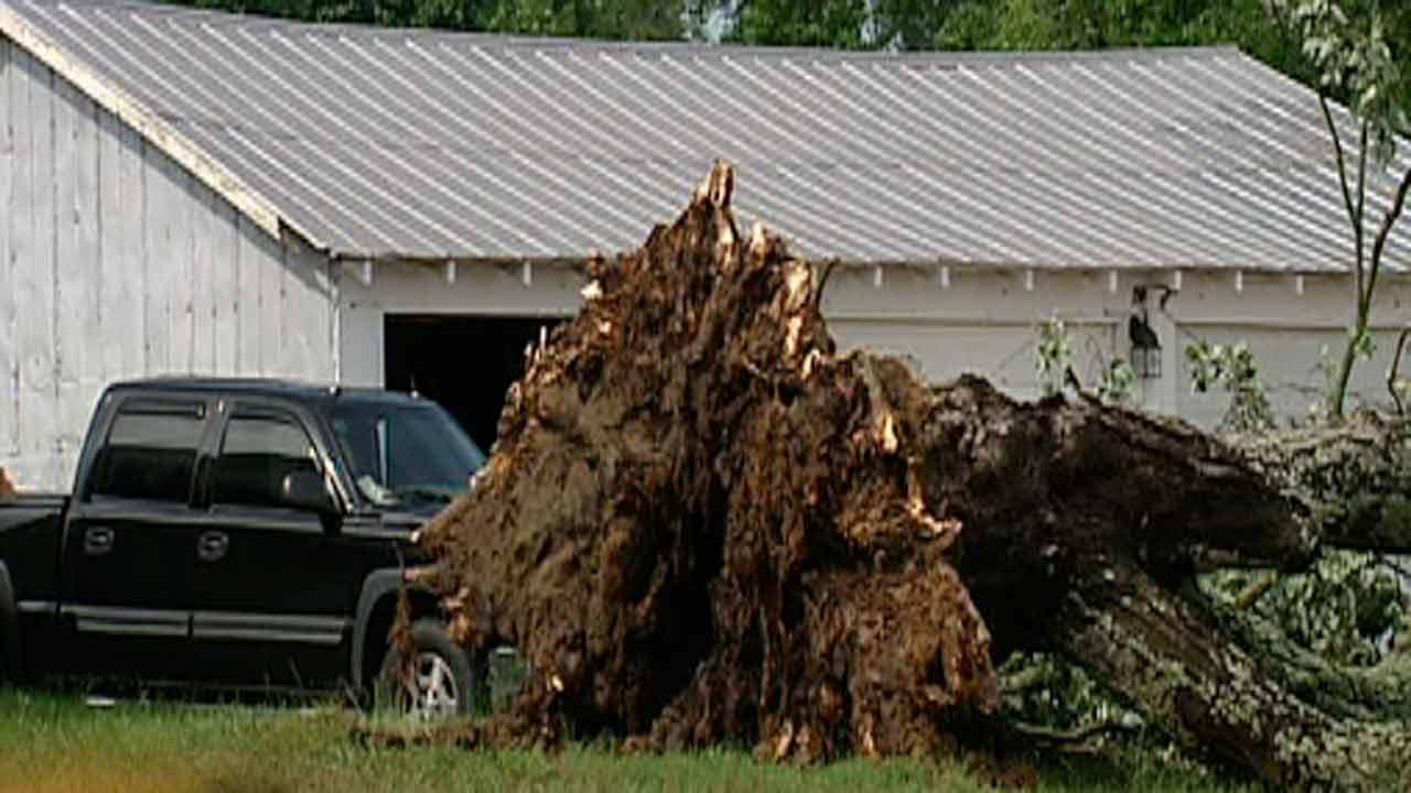 Storms down trees, cause flood concerns across Triangle
