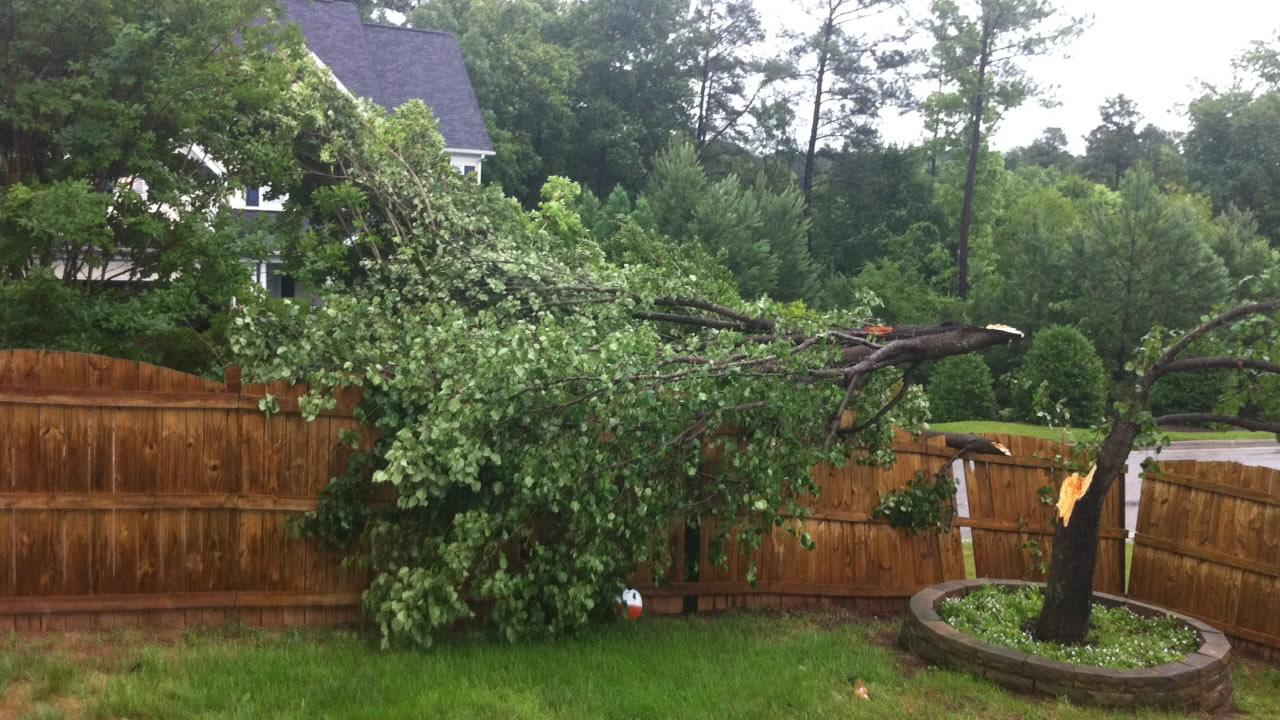 A pear tree in Cary is one of the many storm victims.