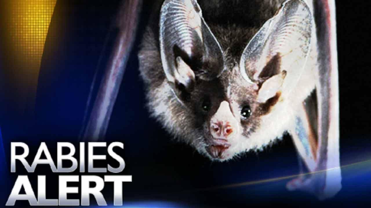 Another rabies case confirmed in Fayetteville