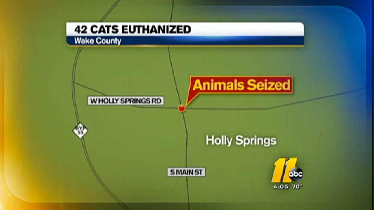 42 cats euthanized map
