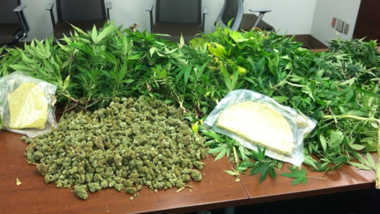 31 pounds of marijuana and pot plants seized in DurhamImage courtesy Durham County Sheriff's Office