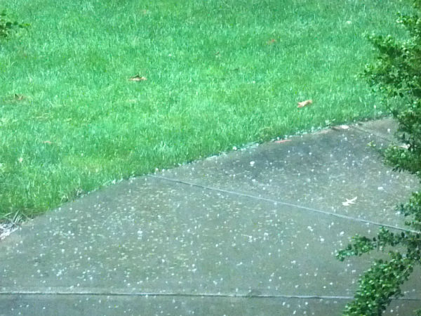A strong thunderstorm dumped parts of the Triangle with heavy rains and hail Tuesday evening. <span class=meta>(Cindy Cayton&#47;WTVD)</span>