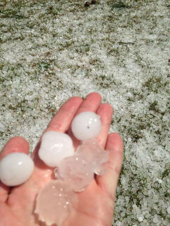 "<div class=""meta image-caption""><div class=""origin-logo origin-image ""><span></span></div><span class=""caption-text"">Hail around central North Carolina. (WTVD Photo/ ABC11 viewer submitted image)</span></div>"