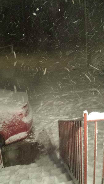 Snow falls across central North Carolina. <span class=meta>(WTVD Photo&#47; ABC11 user submitted image)</span>