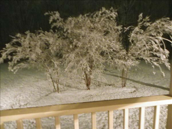 "<div class=""meta image-caption""><div class=""origin-logo origin-image ""><span></span></div><span class=""caption-text"">January snow photo from ABC11 viewer  (Photo/uReport user submitted image)</span></div>"