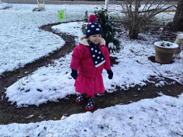 "<div class=""meta ""><span class=""caption-text "">January snow photo from ABC11 viewer  (Photo/uReport user submitted image)</span></div>"