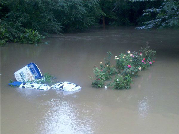 "<div class=""meta ""><span class=""caption-text "">Hybart Branch Creek in Van Story Hiills (Terry Ciszek/WTVD Photo)</span></div>"