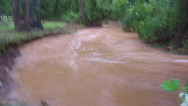 Overflowing creek