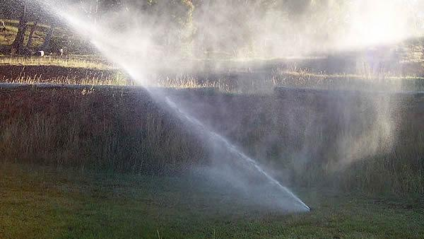 Why were Raleigh's watering restrictions lifted?