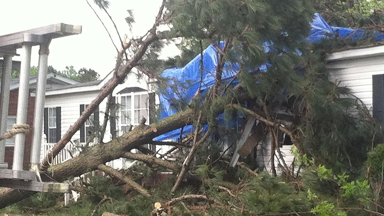Storm damage on Shine Road in Greene CountyCourtesy: Amber Roberts, WCTI-TV