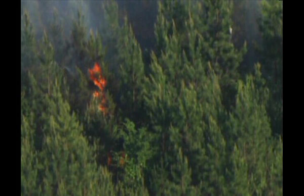 Fire crews fought a 25 acre woods fire in northern Durham County Monday. It broke out near Johnson Mill Road in Bahama. <span class=meta>(Photo&#47;WTVD Photo)</span>