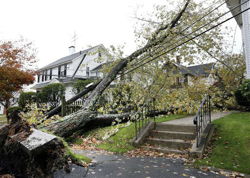 A large tree in Methuen, Mass. Tuesday, Oct. 30, 2012 lays atop power lines due to Monday&#39;s hybrid superstorm Sandy.  <span class=meta>(AP Photo&#47; Elise Amendola)</span>
