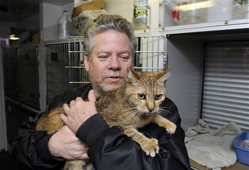Bill Ryan, of Inwood, N.Y., comforts his cat Amy before leaving her at a pet shelter at Mitchell Park&#39;s Field House, run by the Nassau County Office of Emergency Management and Pet Safe Coalition on Sunday, Oct., 28, 2012, in Uniondale, N.Y.  <span class=meta>(AP Photo&#47; Kathy Kmonicek)</span>