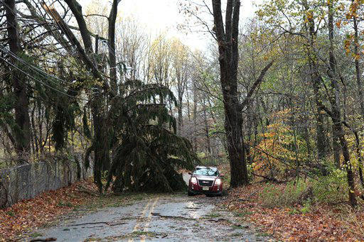 A pine tree broken by the winds of Hurricane Sandy, lies atop JCP&#38;L utility wires, blocking Punchbowl Road in Morristown, NJ, Tuesday morning.   <span class=meta>(AP Photo&#47; &#40;PRNewsFoto&#47;FirstEnergy Corp.&#41;)</span>