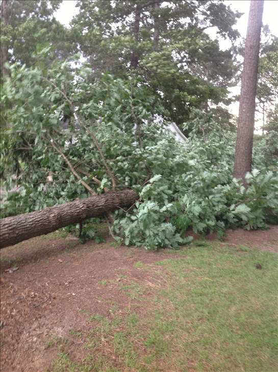 "<div class=""meta ""><span class=""caption-text "">ABC11 viewers sent in photos from storms moving in across the viewing area Thursday evening. (WTVD Photo/ ABC11 UReport Photos)</span></div>"