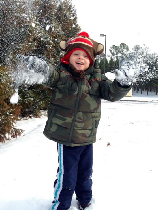 Snow in North Carolina <span class=meta>(WTVD Photo&#47; ABC11 viewer submitted image.)</span>