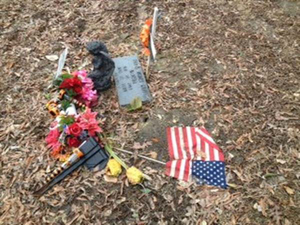 Families say workers who brought heavy equipment into the Cross Creek Cemetery in Fayetteville did unnecessary damage. <span class=meta>(WTVD Photo&#47; Lou Giulette)</span>