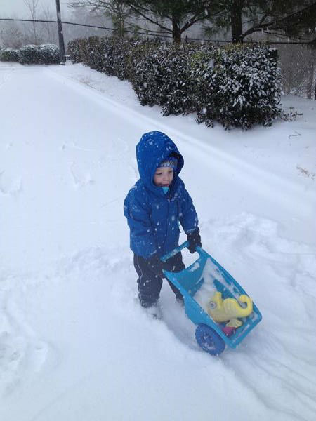 "<div class=""meta ""><span class=""caption-text "">Snow in North Carolina. (WTVD Photo/ ABC11 viewer submitted photo)</span></div>"