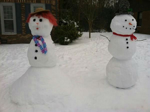 Snow in North Carolina <span class=meta>(WTVD Photo&#47; ABC11 viewer submitted image)</span>