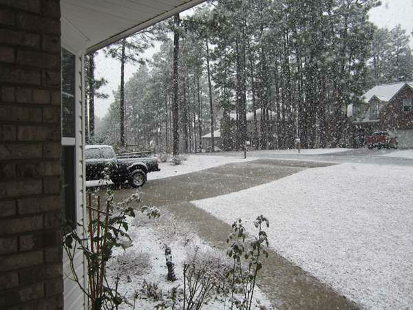 Snow falls in central North Carolina February 16. <span class=meta>(WTVD Photo&#47; viewer photo submitted via uReport)</span>