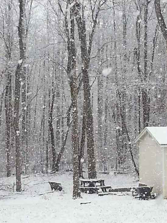 "<div class=""meta ""><span class=""caption-text "">Snow in central North Carolina February 16. (WTVD Photo/ Viewer submitted photo via uReport)</span></div>"