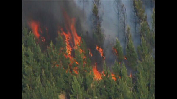 "<div class=""meta ""><span class=""caption-text "">Fire crews fought a 25 acre woods fire in northern Durham County Monday. It broke out near Johnson Mill Road in Bahama.Fire crews fought a 25 acre woods fire in northern Durham County Monday. It broke out near Johnson Mill Road in Bahama. (Photo/WTVD)</span></div>"