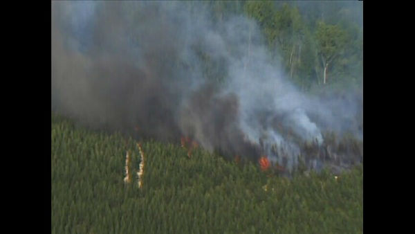 Fire crews fought a 25 acre woods fire in northern Durham County Monday. It broke out near Johnson Mill Road in Bahama. <span class=meta>(Photo&#47;WTVD)</span>
