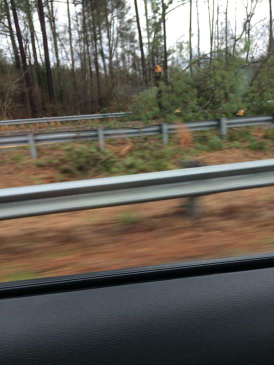 ABC11 viewers spotted damage from Alamance to Wake Counties after Saturday&#39;s tornado warnings swept through the viewing area.  <span class=meta>(WTVD Photo&#47; ABC11 iWitness Photo)</span>
