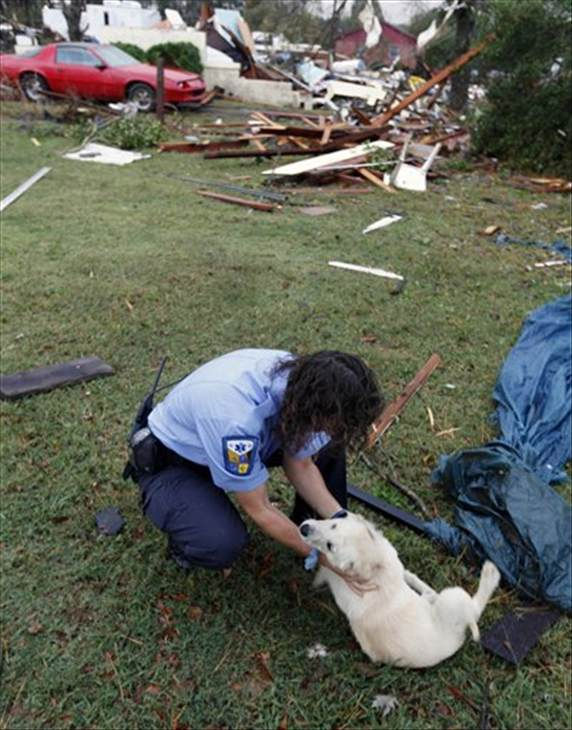Leslie Bowen checks on a stray dog near destroyed homes in Vale, N.C., Wednesday, Oct. 27, 2010 after powerful thunderstorms moved through the area. At least eleven people were hurt and eight homes damaged when a possible tornado touched down in Lincoln County in western North Carolina Tuesday evening, emergency officials said. (AP Photo/Chuck Burton)